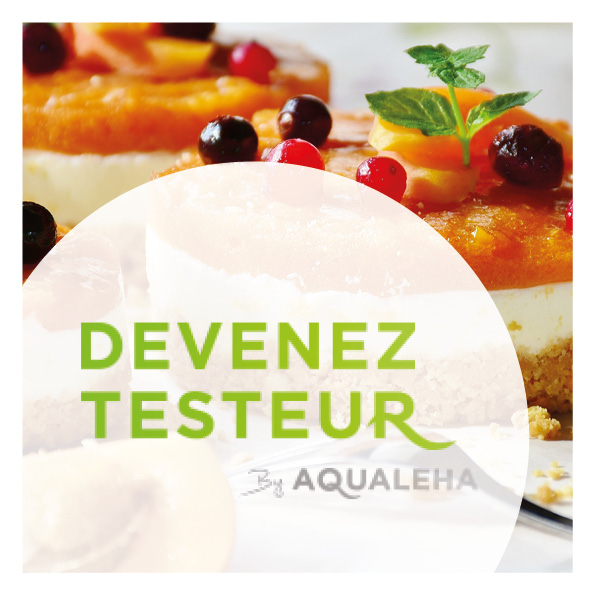 maquette web design devenez testeur by aqualeha