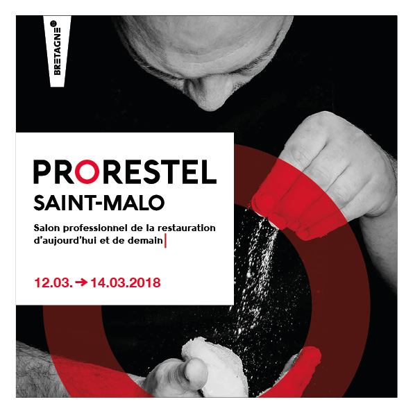 maquette web design prorestel