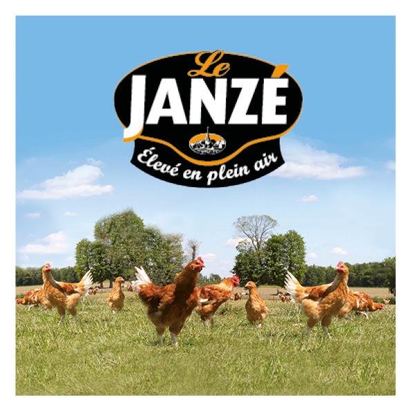 maquette web design poulet de janzé